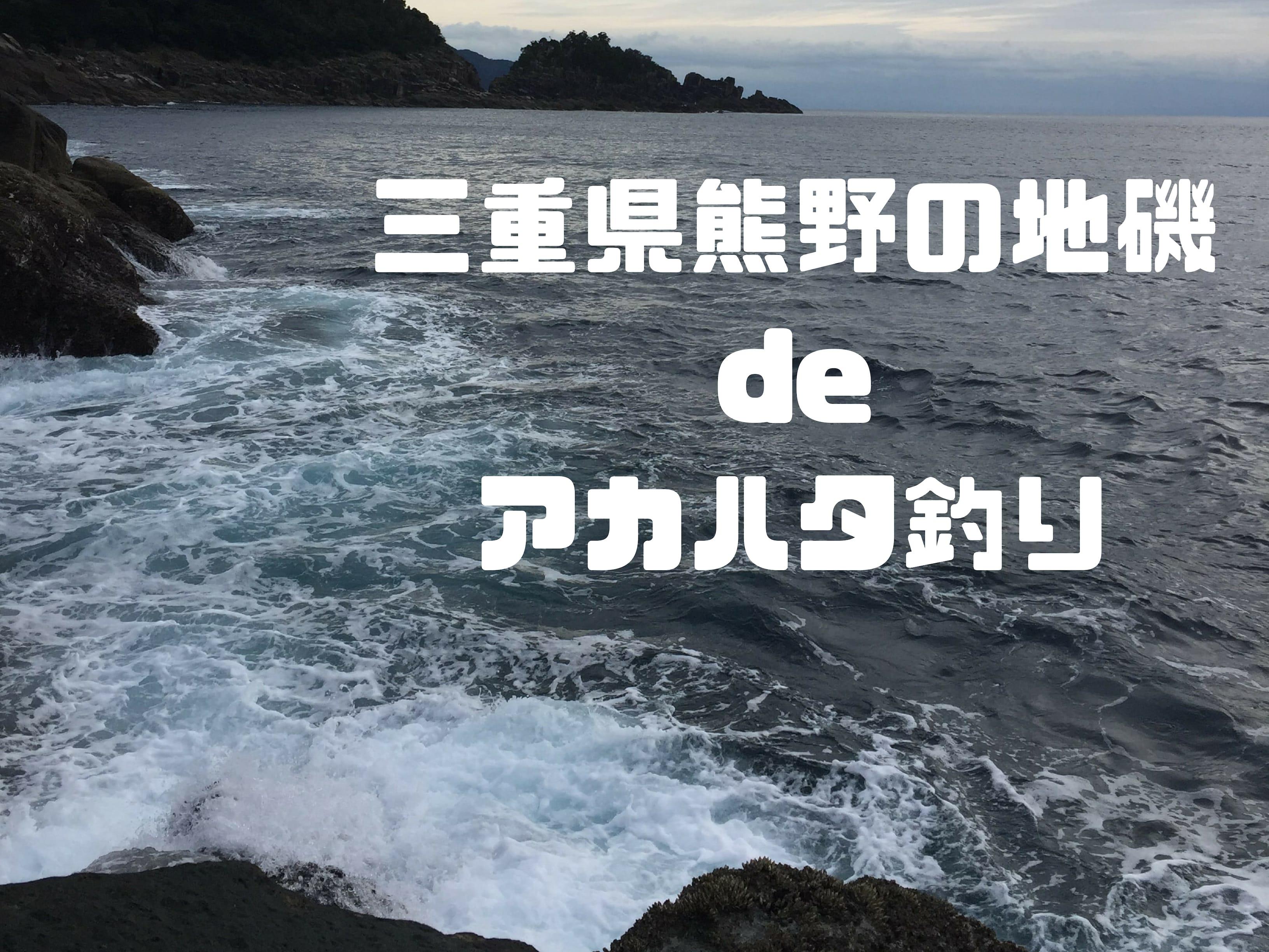 三重県熊野の地磯でアカハタ釣り