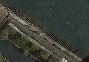 芹川河口のテトラ