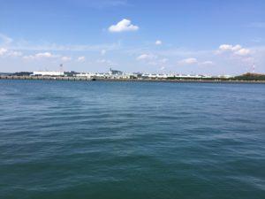 碧南海釣り公園