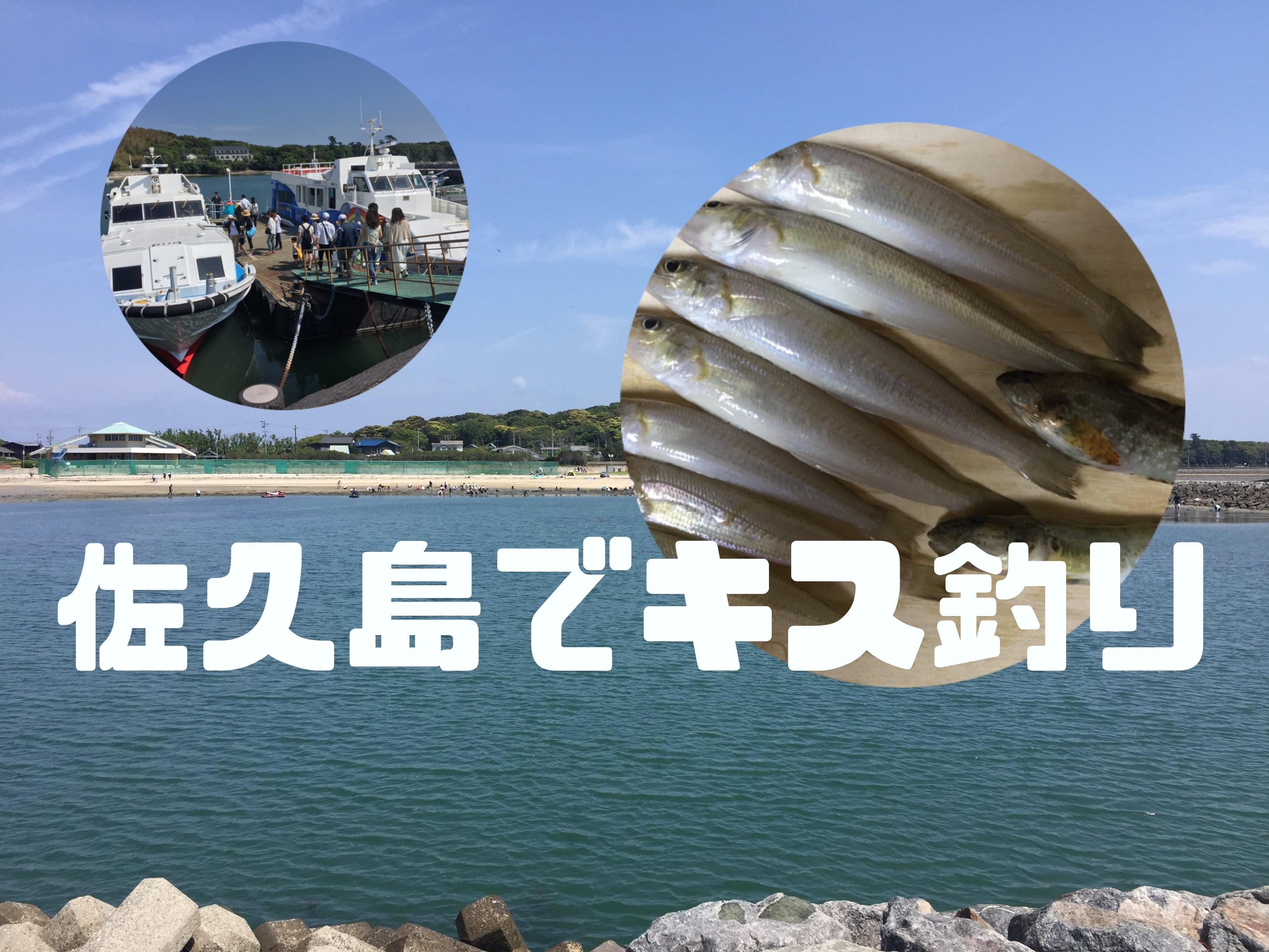 佐久島にキス釣りに行ってきました