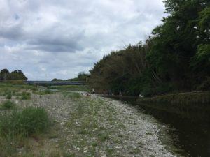 犬上川で小鮎釣り