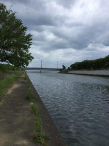 芹川で小鮎釣り