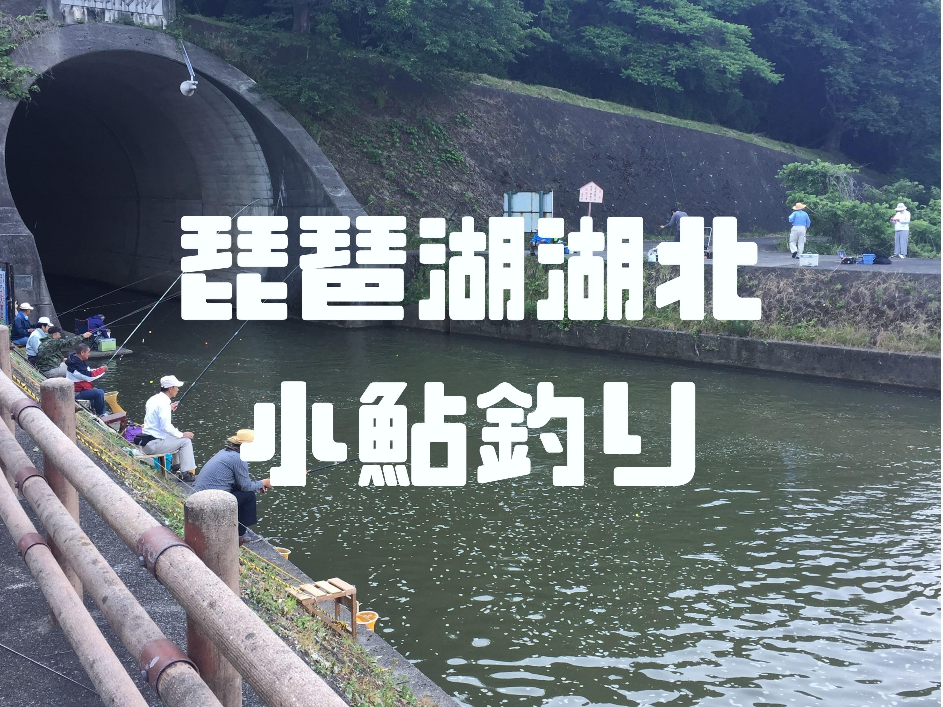 琵琶湖湖北で小鮎釣り