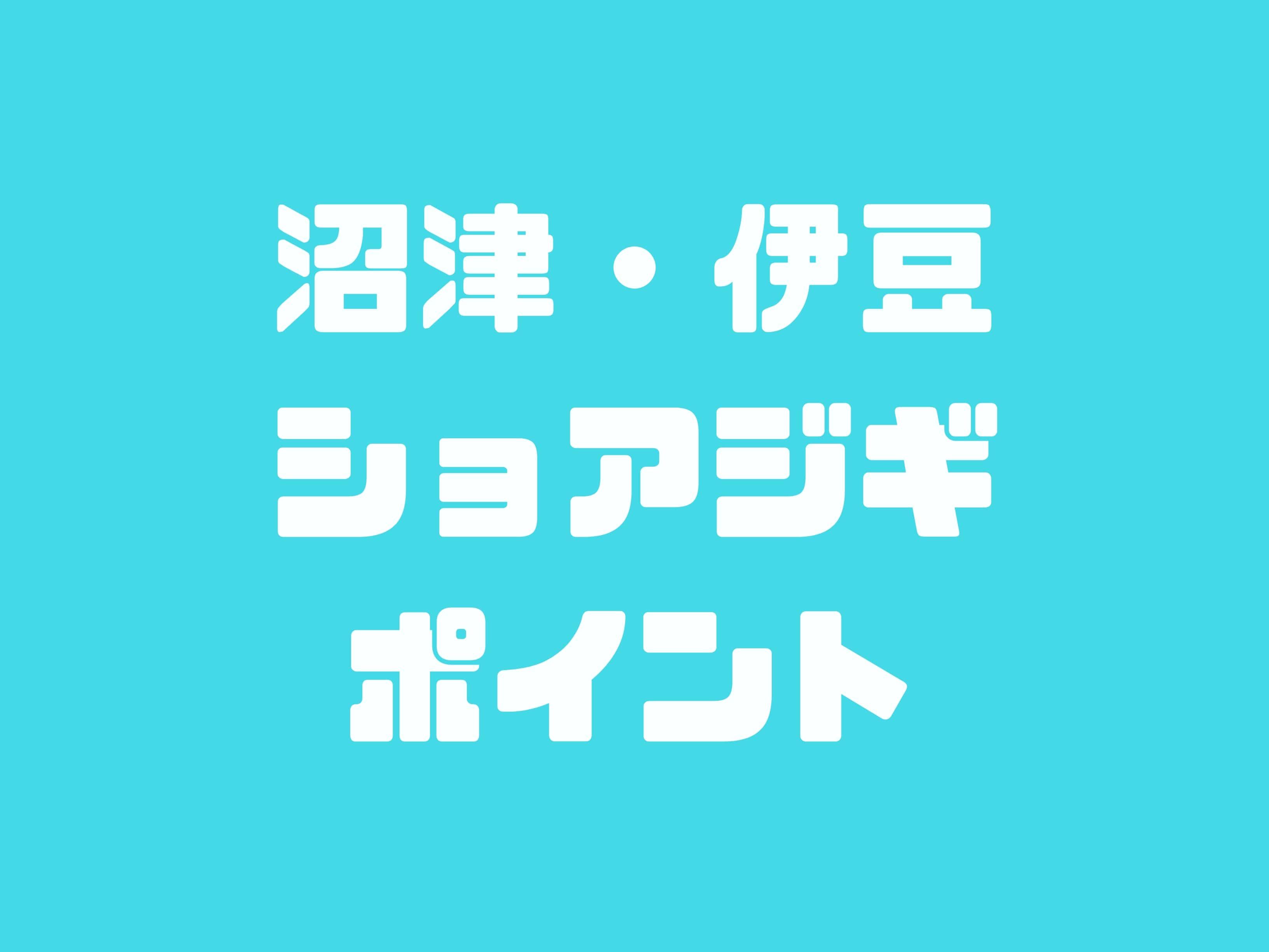 沼津・伊豆ショアジギポイント