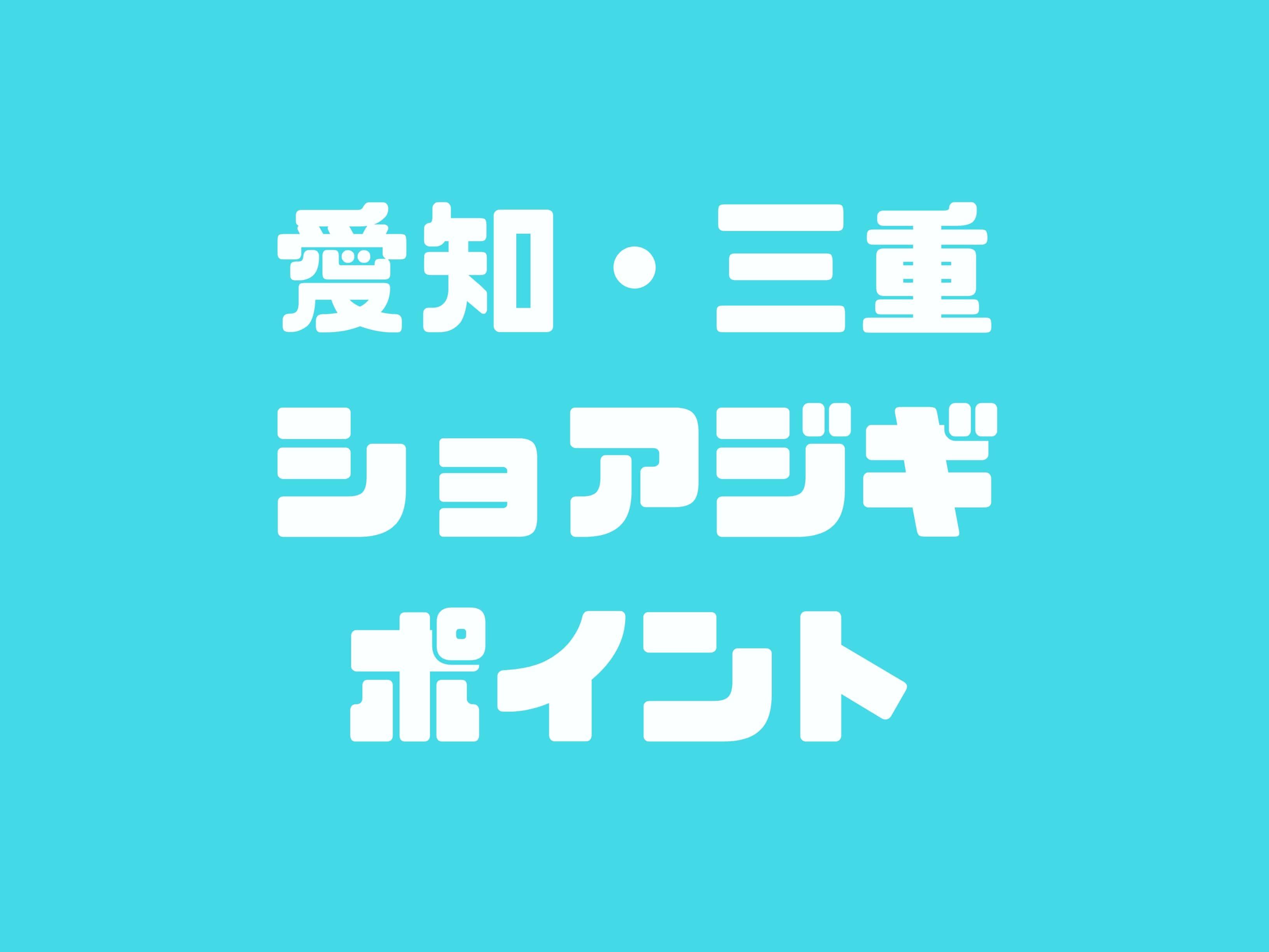 愛知県・三重県でのショアジギングポイント