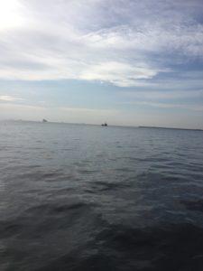 【2019年11月】四日市沖堤防にサワラ・ワラサ狙いでショアジギングに行ってきました