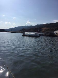 諏訪湖ドーム船でワカサギ釣り