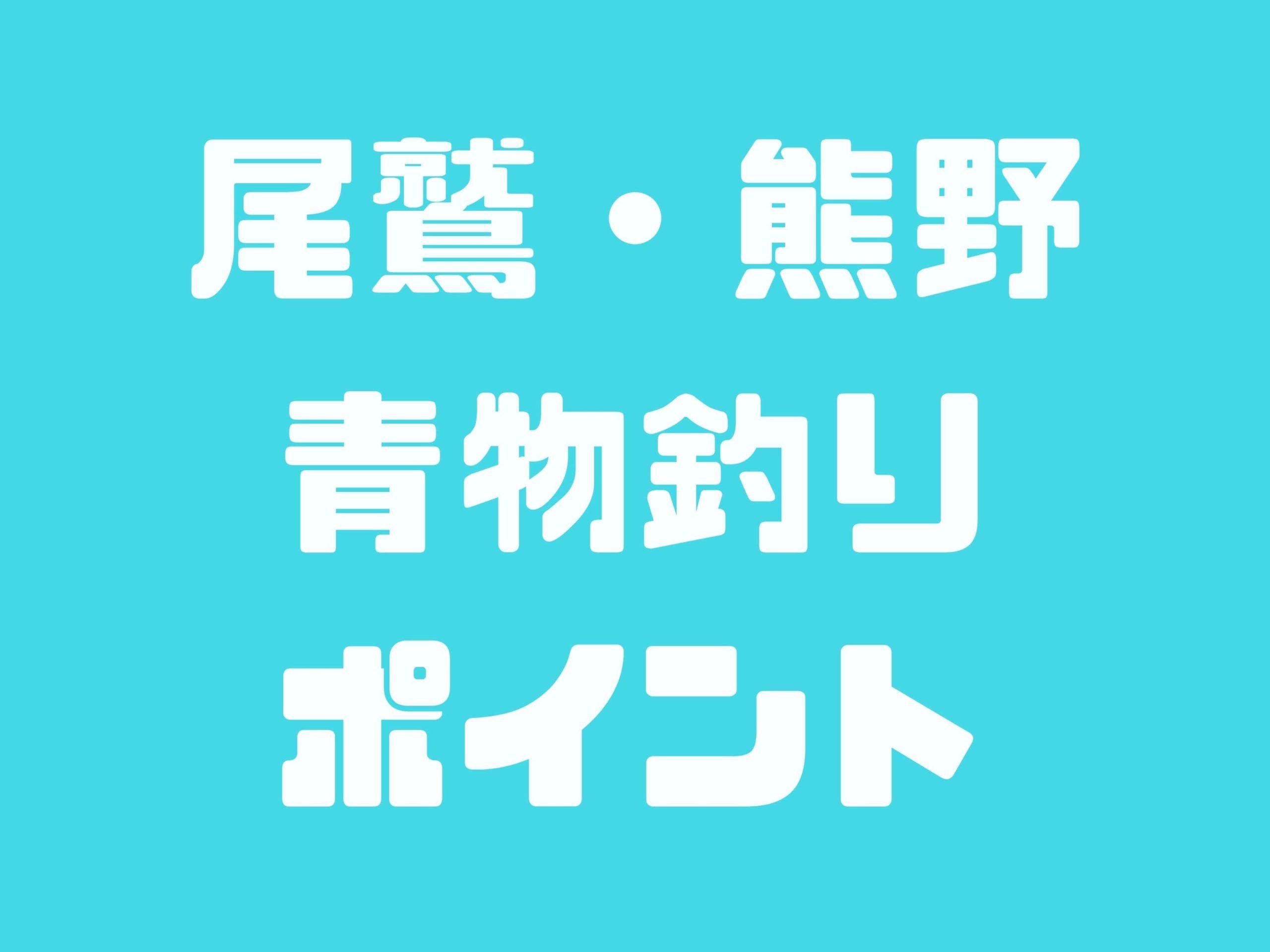 三重県の尾鷲・熊野でショアジギングして青物が釣れるポイント