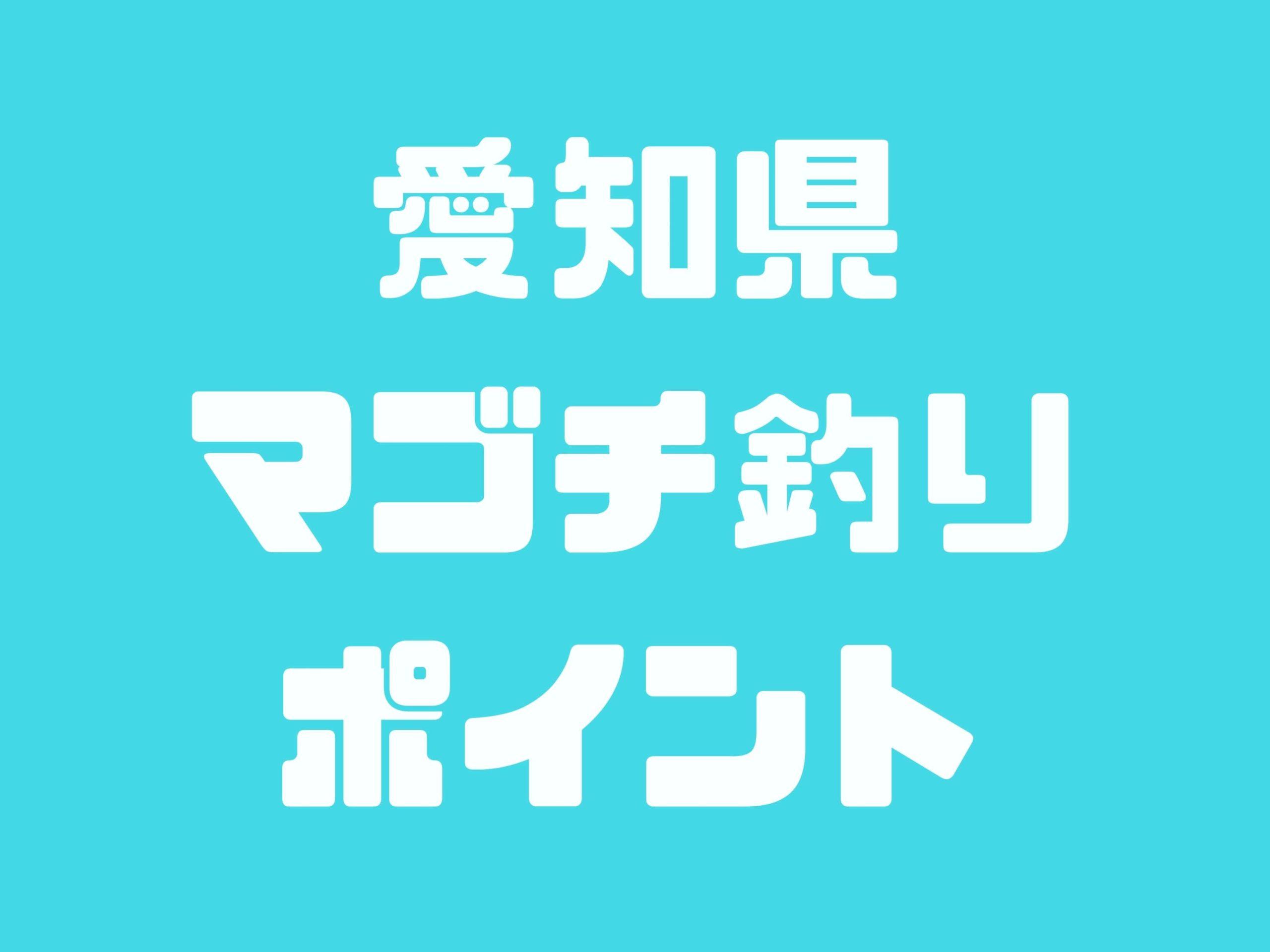 愛知県マゴチ釣りポイント「新舞子マリンパーク」「りんくう釣り護岸」「冨具崎港」「内海新港」「河和港」