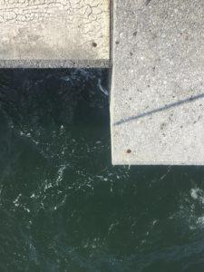 【2020年6月】四日市の霞沖堤防にタコをルアーで釣りに行ってきました