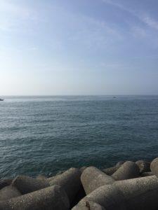 【2020年8月】淡路島にタチウオと青物釣りに行ってきました