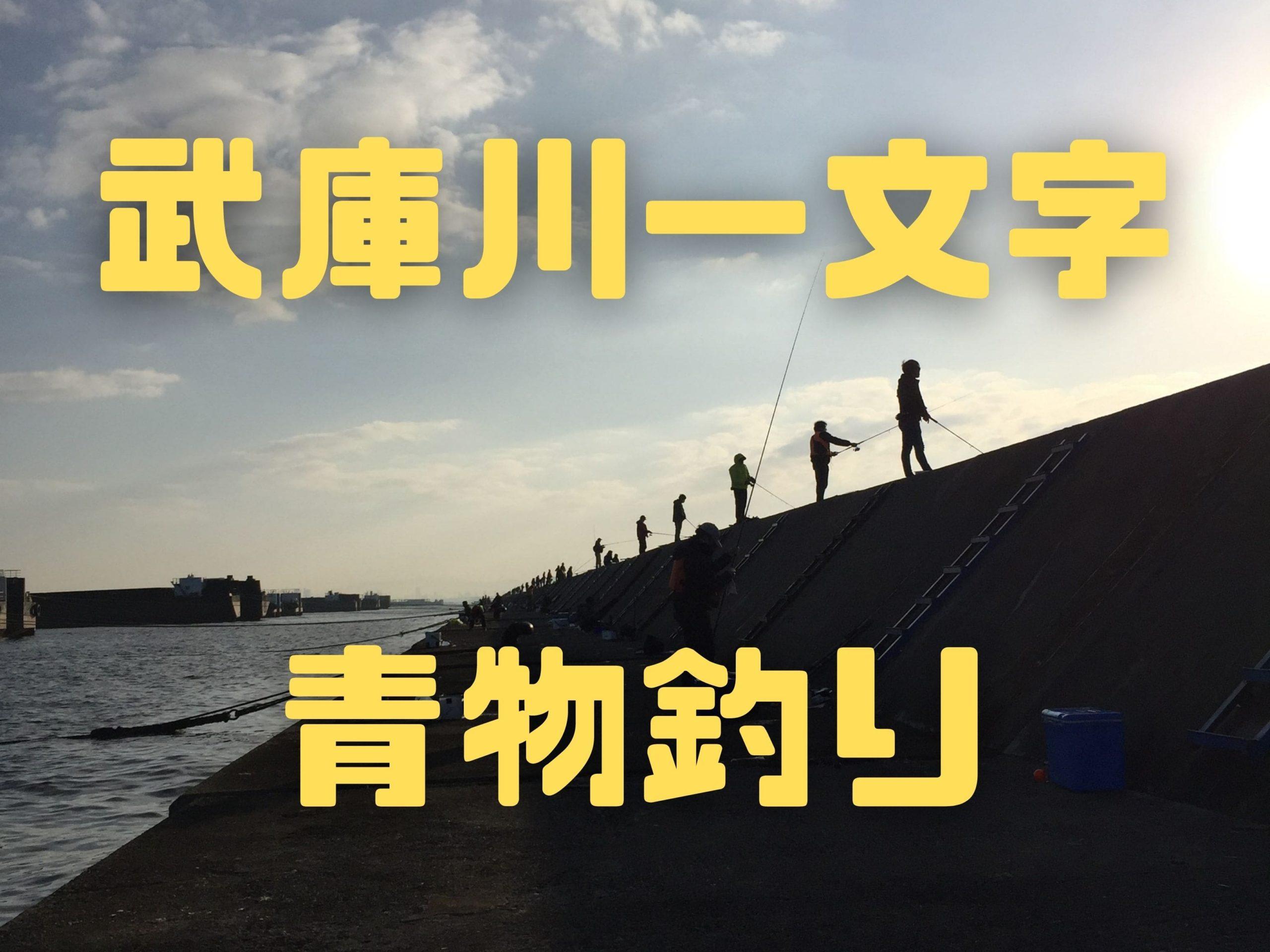 【2020年11月】武庫川一文字にブリ釣りに行ってきました