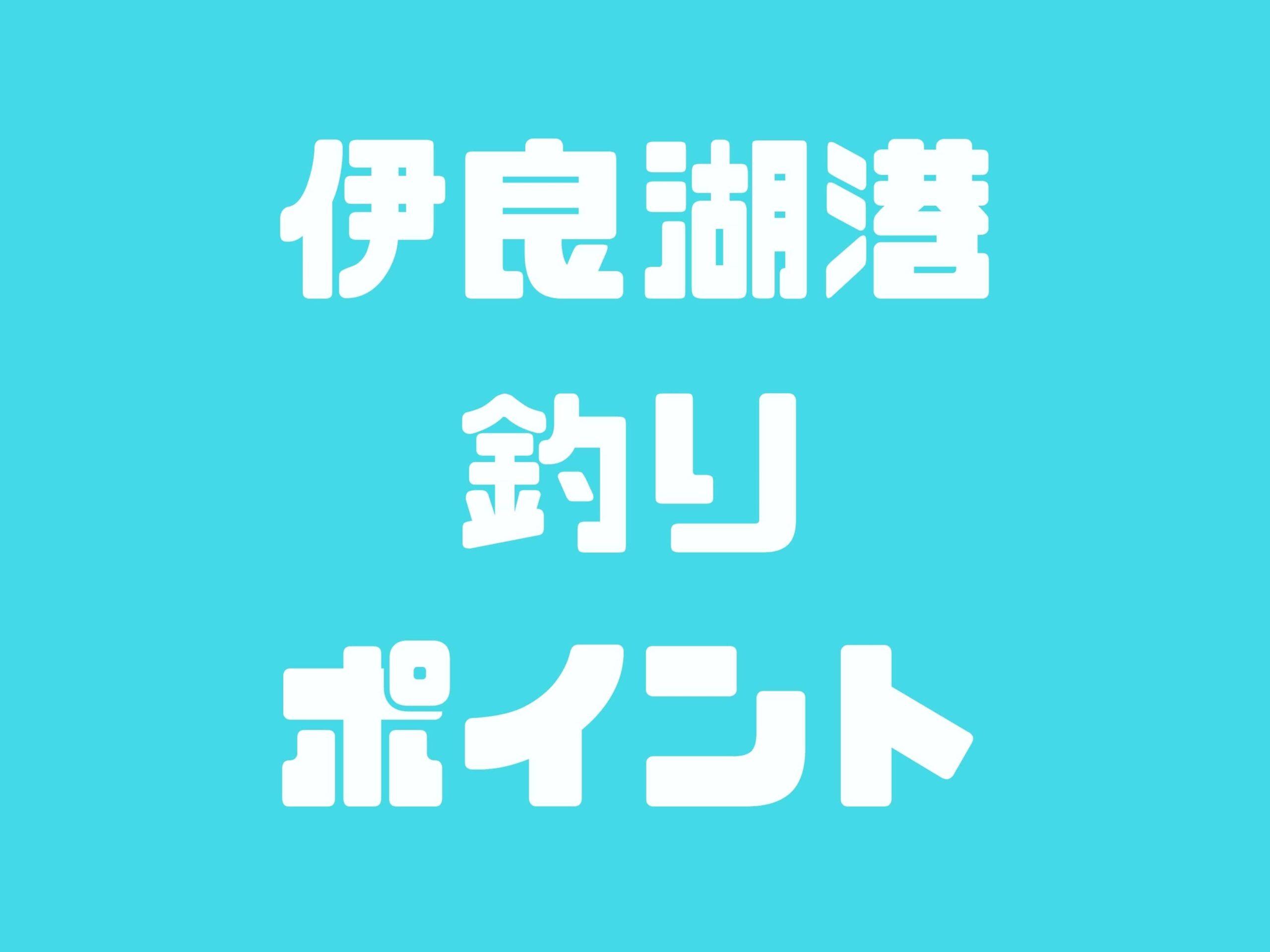【伊良湖港】愛知県でブリを釣るならここ!シーバス・ヒラメ・メバルも大物が釣れます
