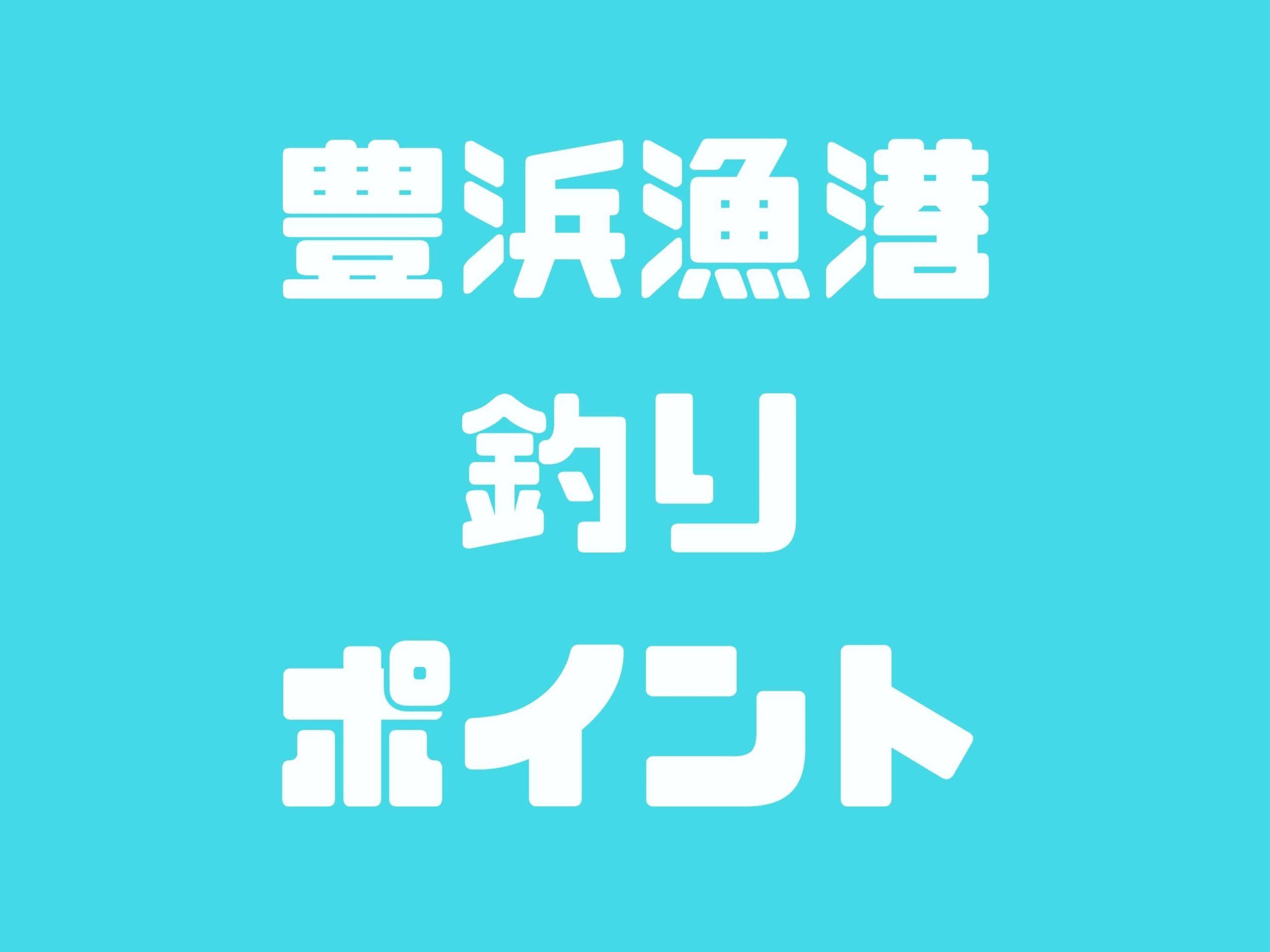 【豊浜漁港】愛知県内屈指の好魚場!青物・アオリイカ・タチウオ・タコなど釣れます