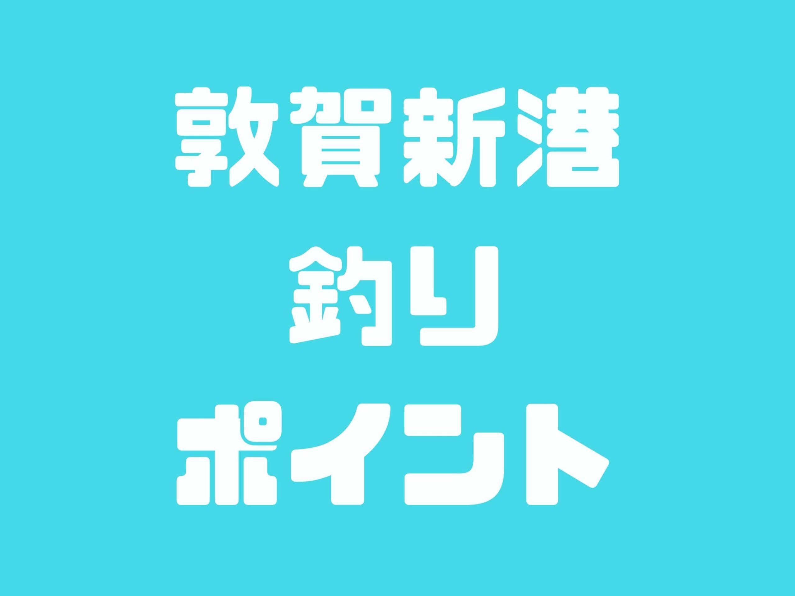 【敦賀新港】毎年春にサゴシ祭りが開催!他にもアジ・アオリイカ・キジハタなども釣れます