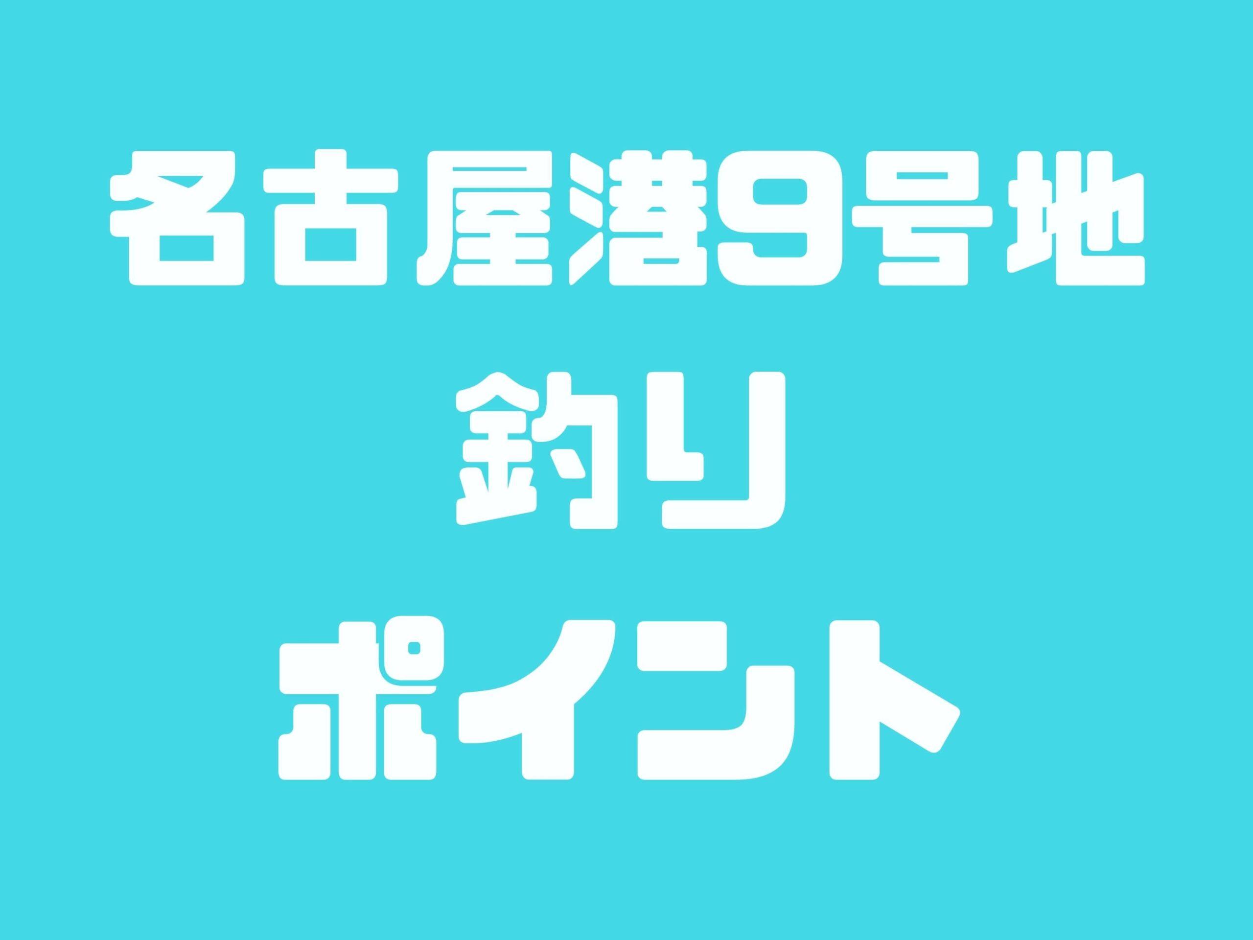【名古屋港9号地】シーバス・チヌ・アナゴが釣れるポイントです