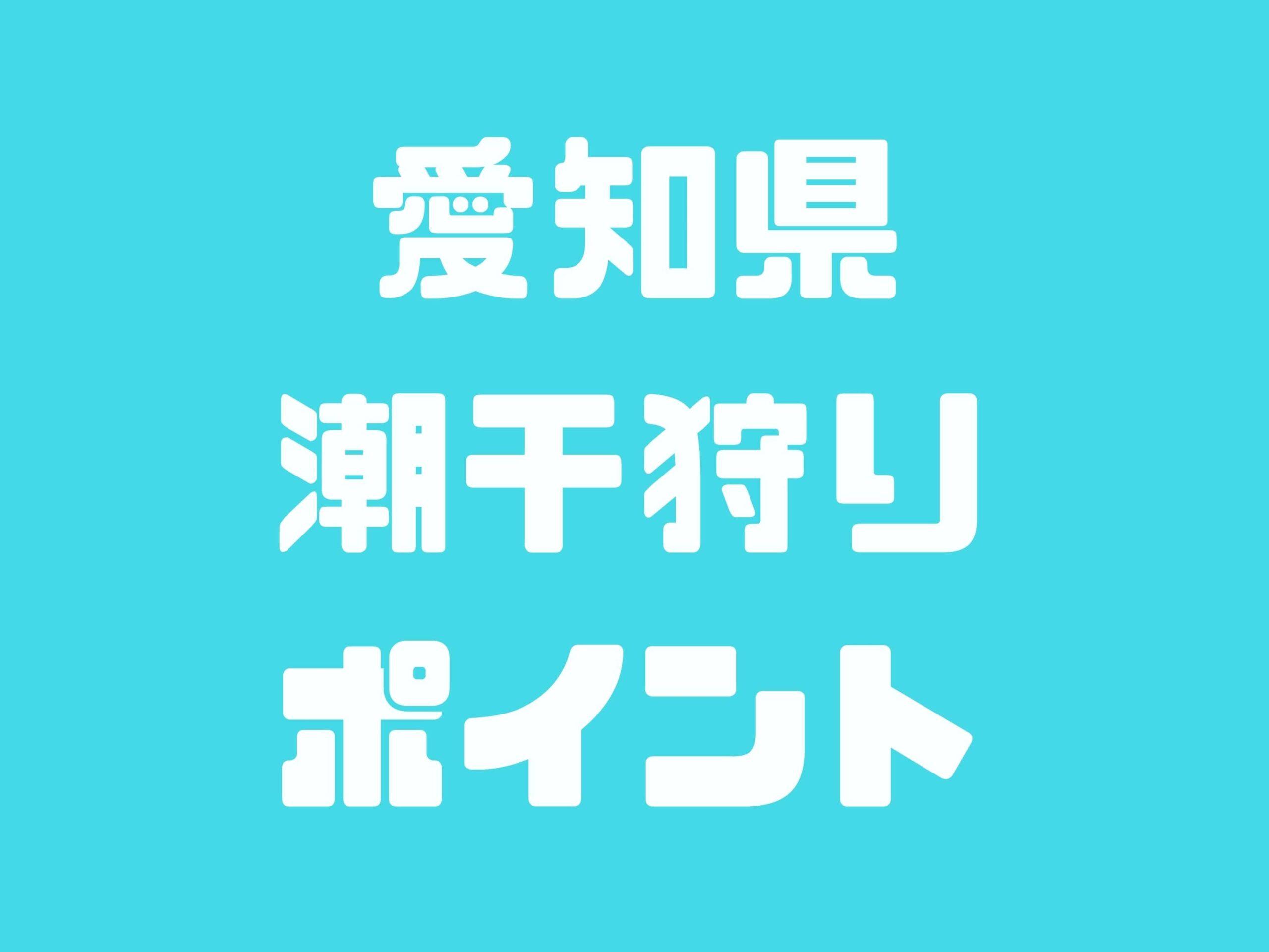 愛知県の潮干狩りスポットをご紹介します